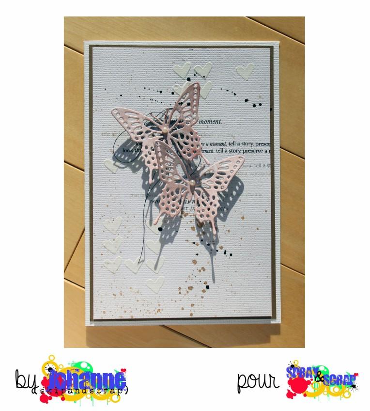 Carte Papillon5
